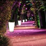 Folia_Lighted_Planter_Enviroment